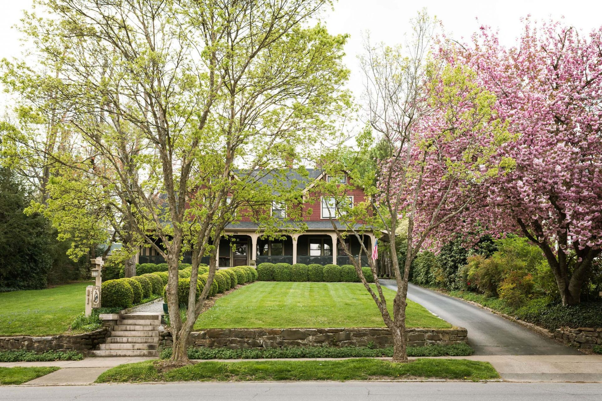 The front side of the Bed and Breakfast in Asheville with two tall trees growing on the sidewalk, cherry blossom trees to the right. Front yard with trimmed lawn and rows of green round ball bushes.