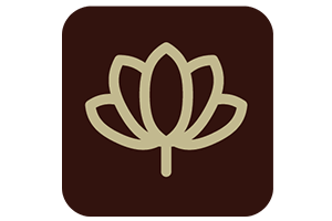 Brown icon with spa lotus flower outline